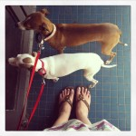 IMG 4483 150x150 A Year in Instagrams