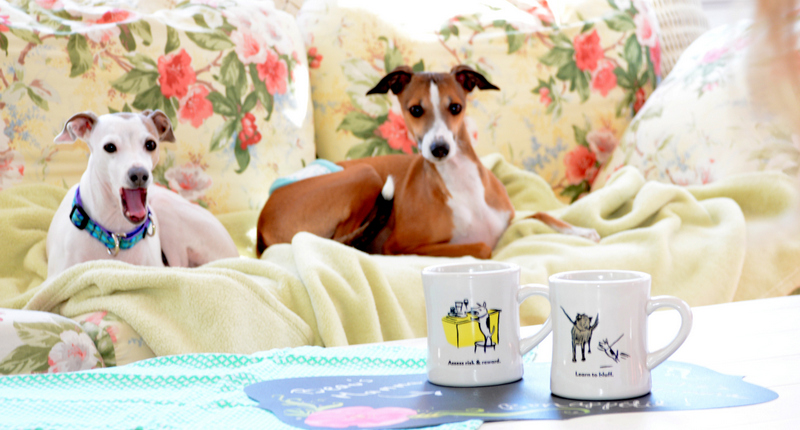 12 DSC 1986 Bad Dog Wisdom and Video Kitty Mugs, an Uncommon Goods Review