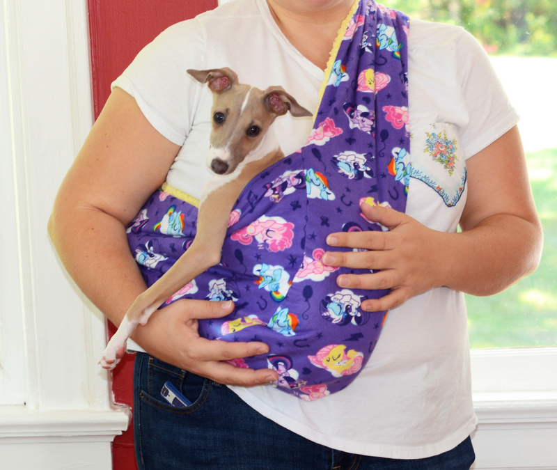 Diy soft and cozy pet sling my so called crafty life - Pattern for dog carrier sling ...